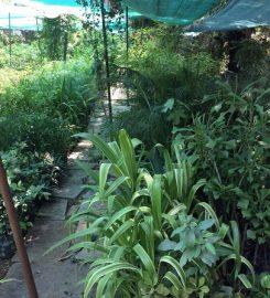 Mita Nursery