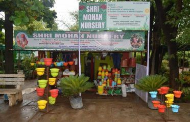 Shri Mohan Nursery