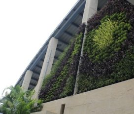 Green Up India Vertical Garden