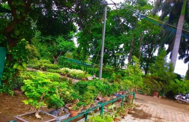 Van Nidhi Farms & Nursery