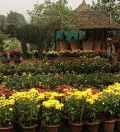 Greenways Nursery