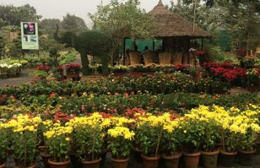 Greenways Nursery