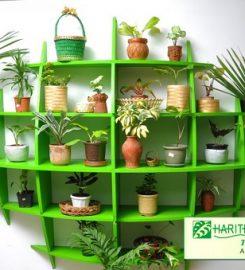 Harith Tharang Nursery