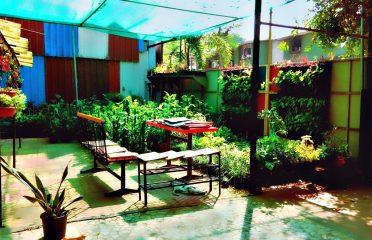 Studio Rock & Garden