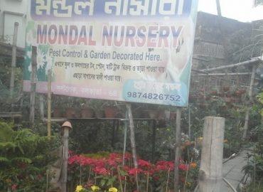 Mondal Nursery