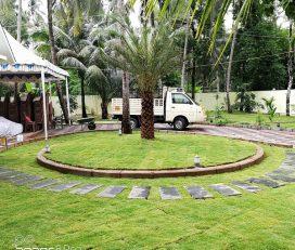 Nila Garden Design And Landscaping