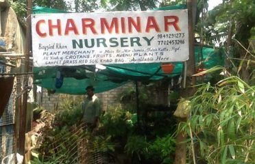 Charminar Nursery