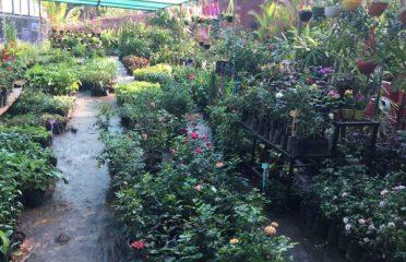 Aiswarya Gardens