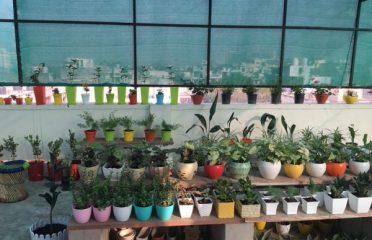 Garden Onsite Nursery