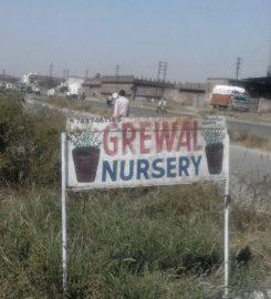 Grewal Nursery