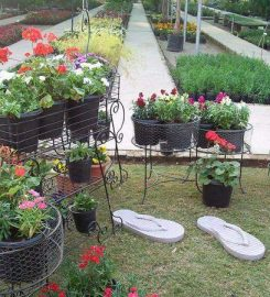 Technocare Nursery and Garden Centre