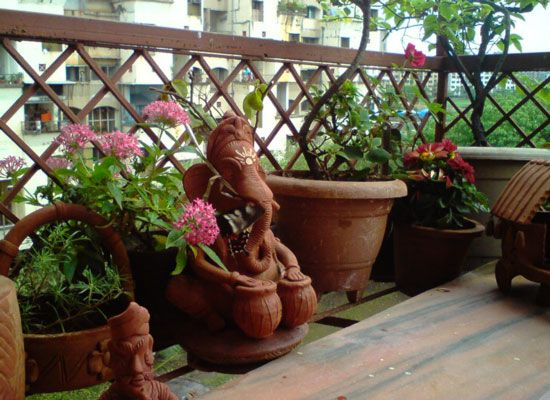 How To Start A Balcony Garden In India India Gardening