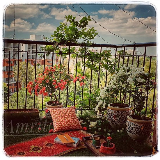 20 Beautiful Indian Balcony Garden Ideas India Gardening