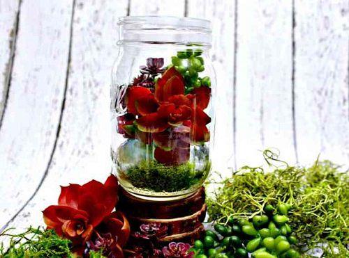 12 Beautiful Succulents In Mason Jar Ideas India Gardening